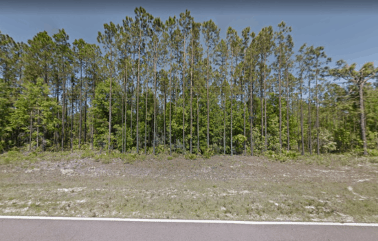 16.53 Acre Double Lot  Residential Land near Williams Subdivision in Fountain, Calhoun County Calh-032921and Calh-MSCGOY2R