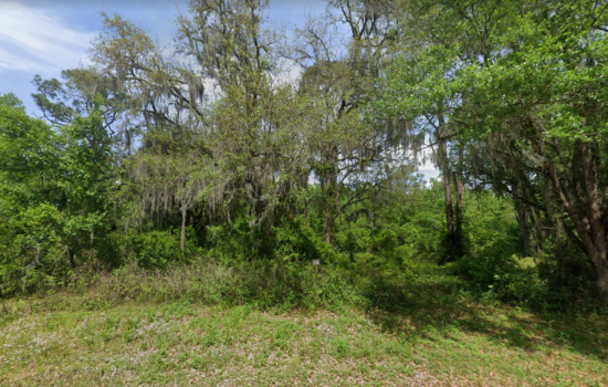 0.38 Acres of Rural Residential Land for Family or Mobile or Modular Homes in Putnam County – Putn-IDBLMKRO